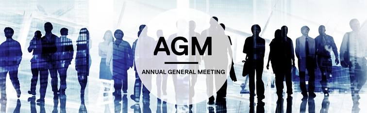 Proceedings of the 2019 HCSS Annual General Meeting